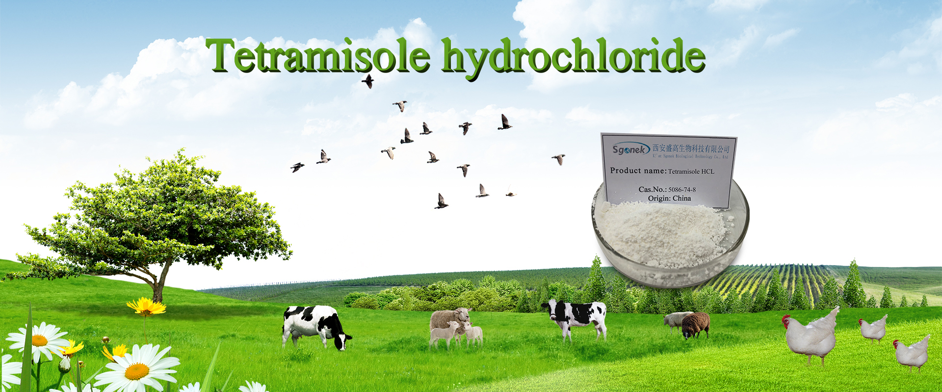 Tetramisole-HCL